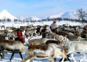 Kurs eller konferanse i Finnmark?