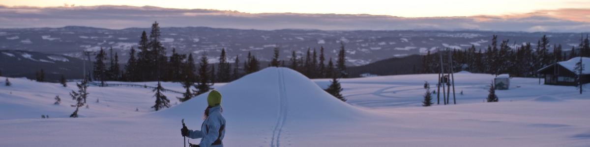 På ski på Sjusjøen