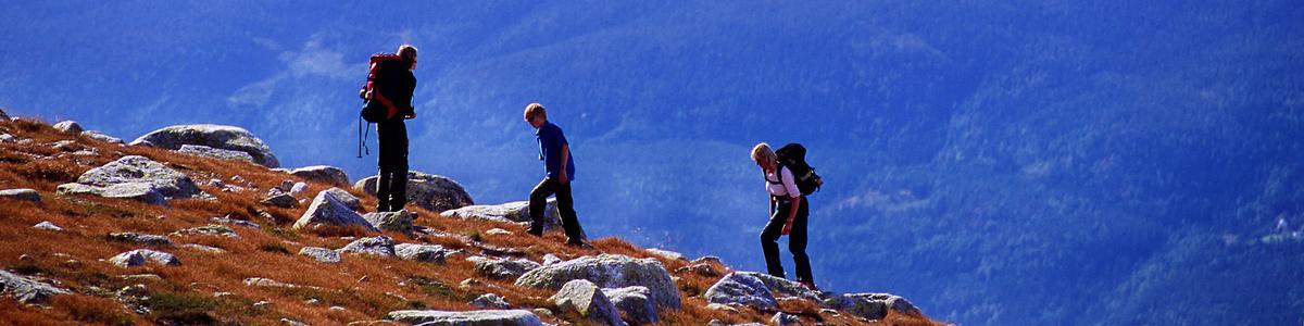 Turgåere til Høgevarde