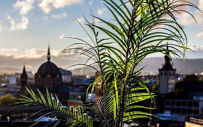 Stratos Konferanse & Selskapslokale - Utsikt fra takterrassen